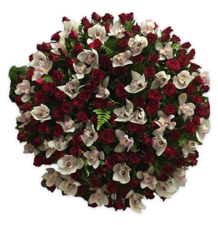 coroa funeral beja