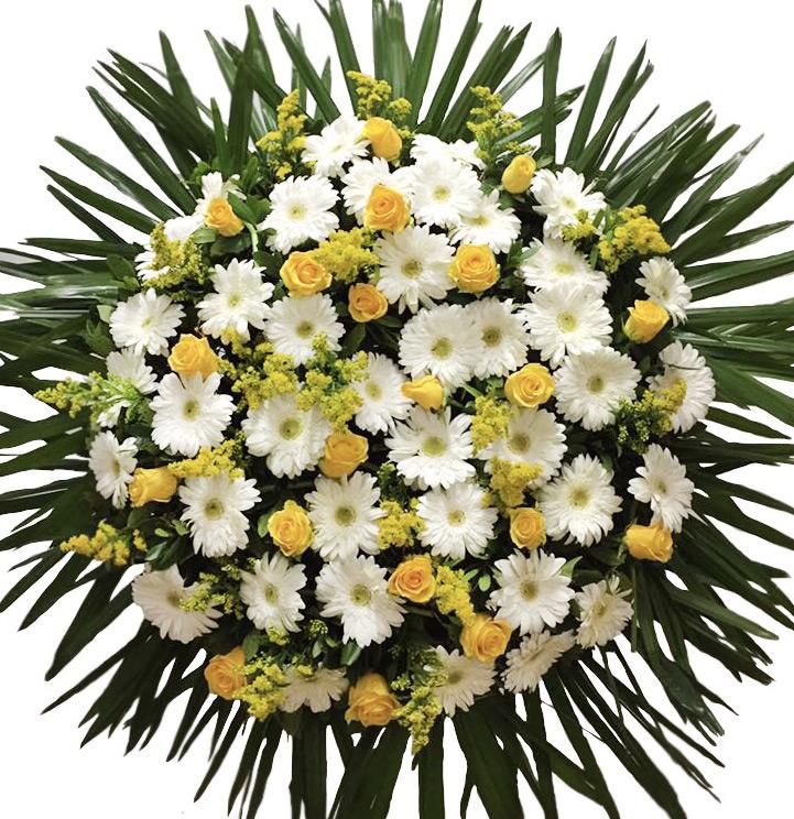 coroa funeral coimbra